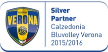 silver. partner bluvolley